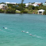 athletes swimming in the gorgeous water at the Bermuda Triathlon Training Camp