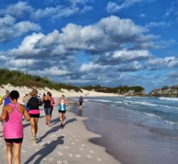 Athletes training at the Bermuda Triathlon Training Camp