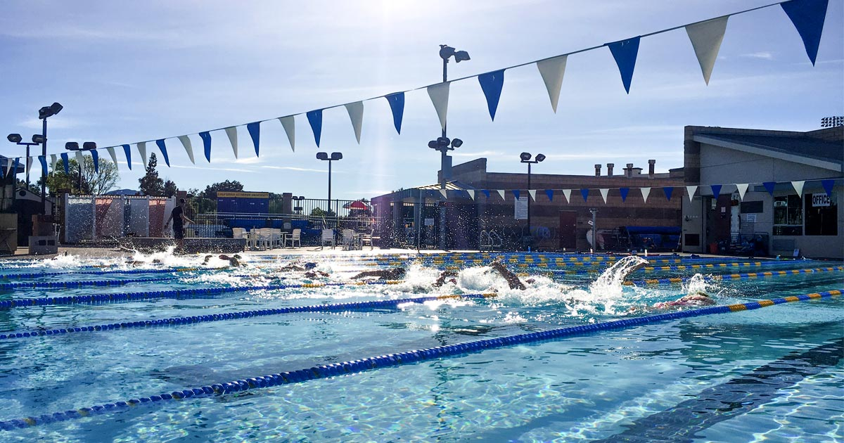 Triathletes putting in the laps at an outdoor pool at a camp, training for a triathlon.